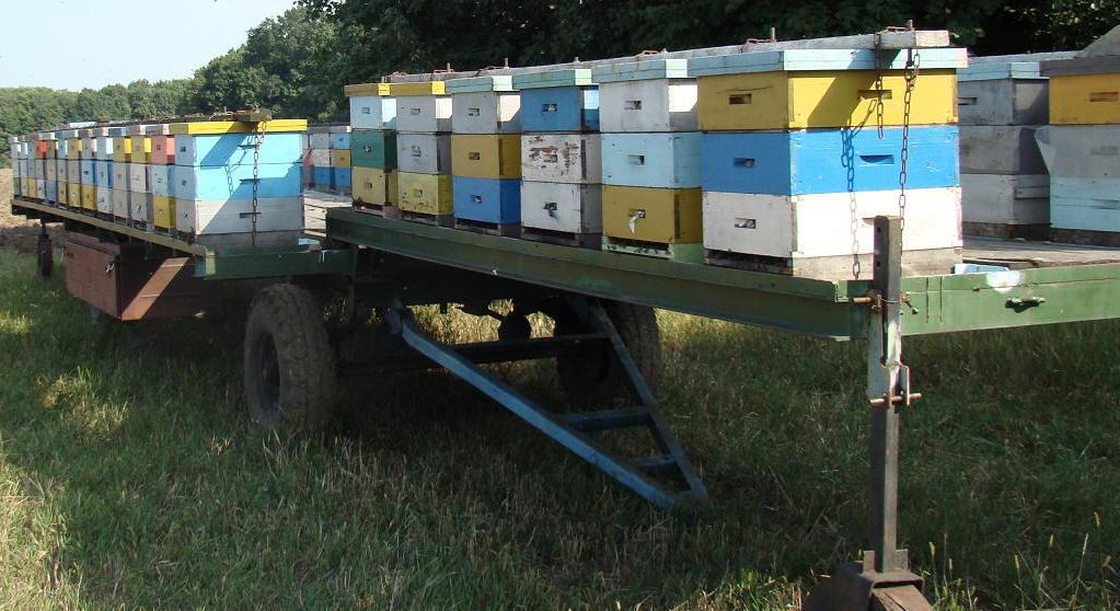Как сделать прицеп для пчел своими руками